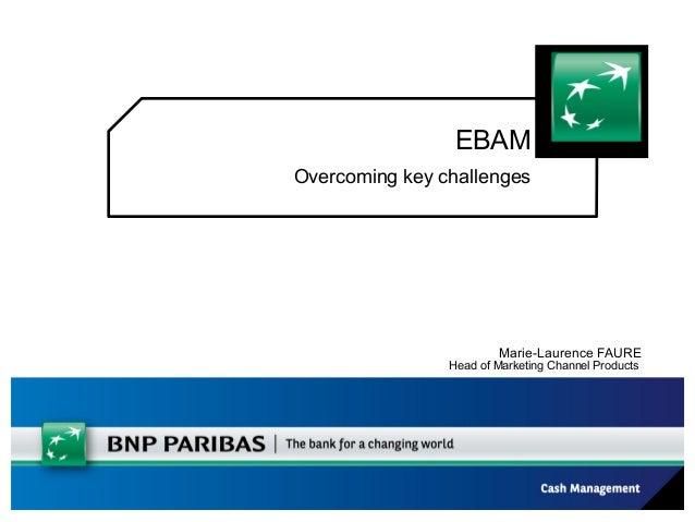 BNP Paribas for Zanders EBAM Seminar, November 13th, 2012