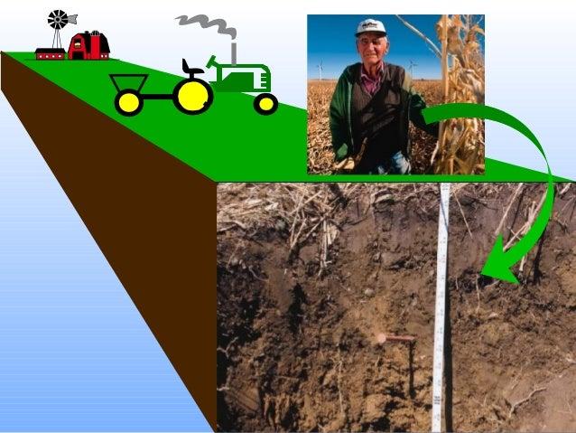 Soil Microbiology helpppppppppppp?