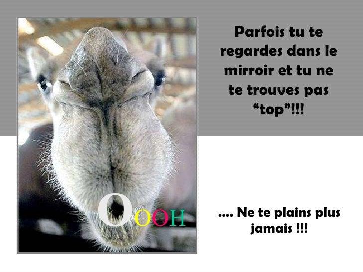 "… .  Ne te plains plus jamais !!! O O O H Parfois tu te regardes dans le mirroir et tu ne te trouves pas ""top""!!!"