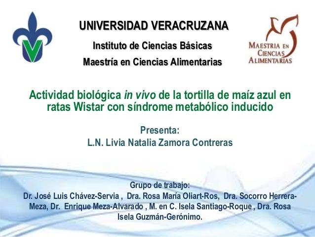 Instituto de Ciencias Básicas Actividad biológica in vivo de la tortilla de maíz azul en ratas Wistar con síndrome metaból...