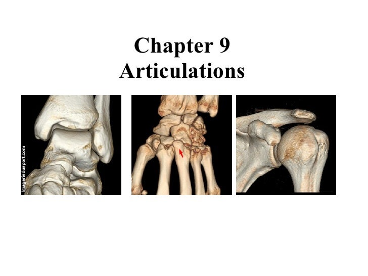 Chapter 9 Articulations