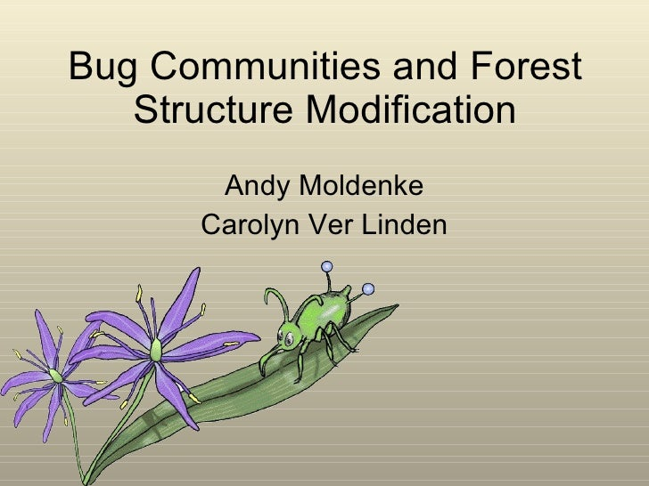 Bug Communities and Forest Structure Modification Andy Moldenke Carolyn Ver Linden