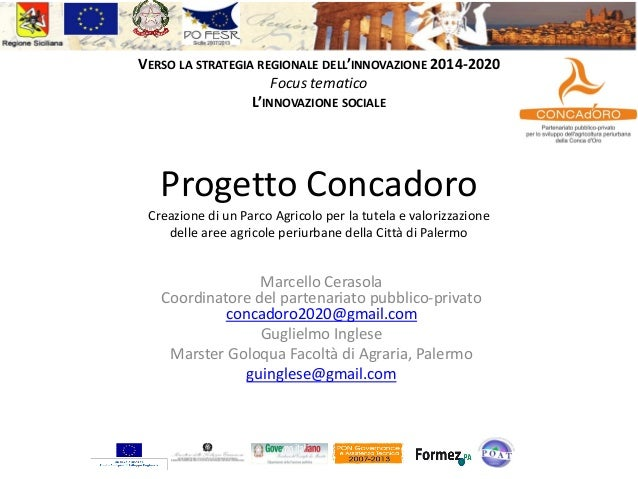Il vostrologo quiVERSO LA STRATEGIA REGIONALE DELL'INNOVAZIONE 2014-2020Focus tematicoL'INNOVAZIONE SOCIALEProgetto Concad...