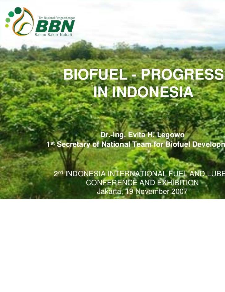 BIOFUEL - PROGRESS       IN INDONESIA                Dr.-Ing. Evita H. Legowo1st Secretary of National Team for Biofuel De...
