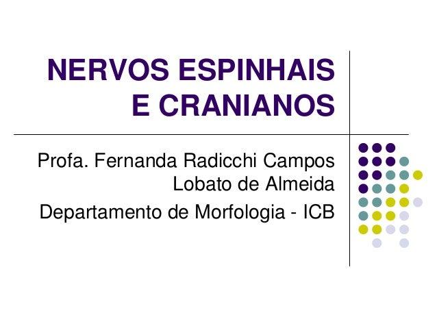NERVOS ESPINHAIS E CRANIANOS Profa. Fernanda Radicchi Campos Lobato de Almeida Departamento de Morfologia - ICB