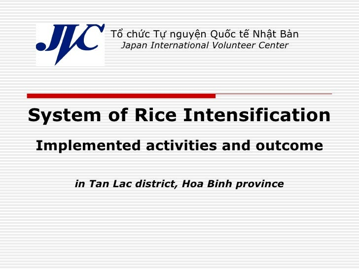 System of Rice Intensification Implemented activities and outcome in Tan Lac district, Hoa Binh province Tổ chức Tự nguyện...