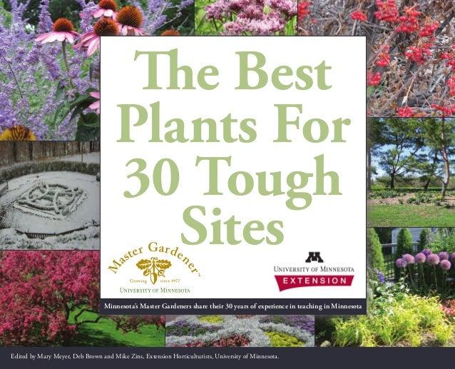 The Best Plants For 30 Tough Sites - University of Minnesota