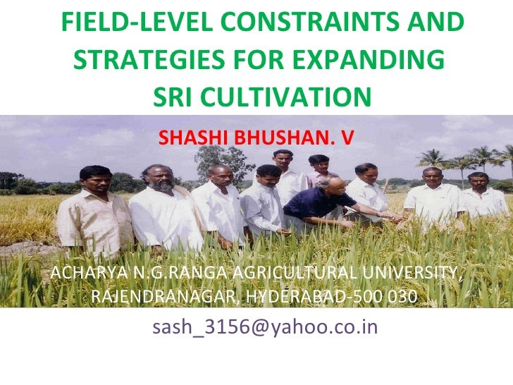 0850 Field Level Constraints and Strategies for Expanding SRI Cultivation