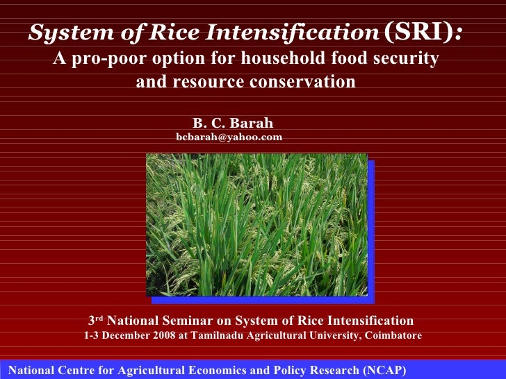 0864 System of Rice Intensification (SRI): A Pro-Poor Option for Household Food Security and Resource Conservation