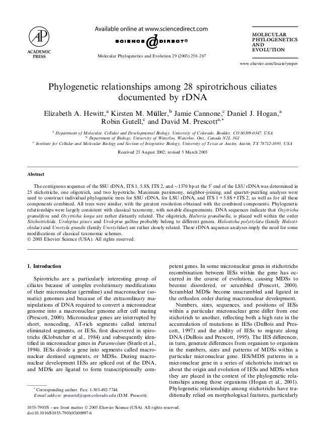 Phylogenetic relationships among 28 spirotrichous ciliatesdocumented by rDNAElizabeth A. Hewitt,aKirsten M. M€uuller,bJami...