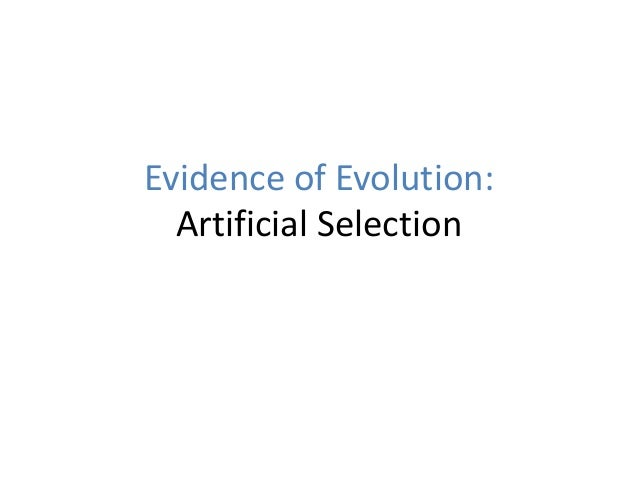 Evidence of Evolution: Artificial Selection