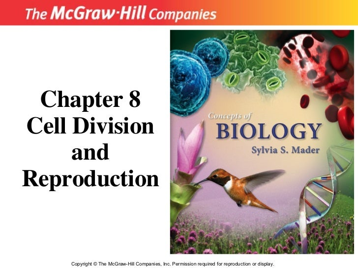 Copyright  ©  The McGraw-Hill Companies, Inc. Permission required for reproduction or display. Chapter 8 Cell Division and...