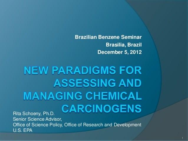 Brazilian Benzene Seminar                                         Brasilia, Brazil                                       D...