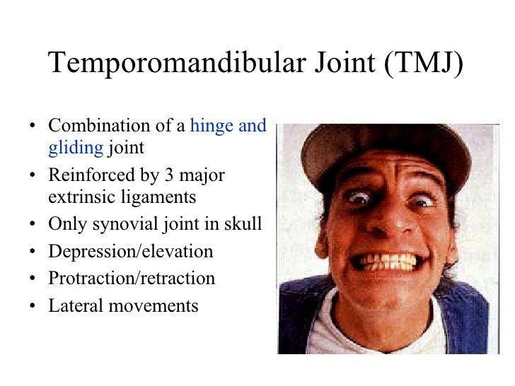 Temporomandibular Joint (TMJ) <ul><li>Combination of a  hinge and gliding  joint </li></ul><ul><li>Reinforced by 3 major e...