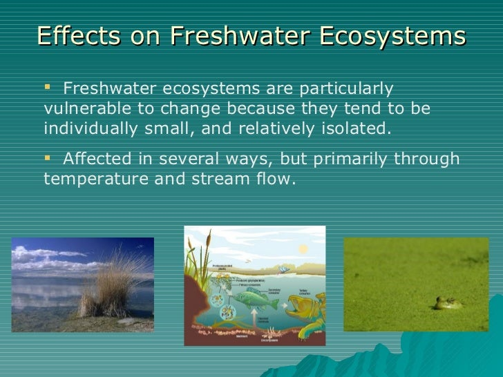 Effects on Freshwater Ecosystems <ul><li>Freshwater ecosystems are particularly vulnerable to change because they tend to ...