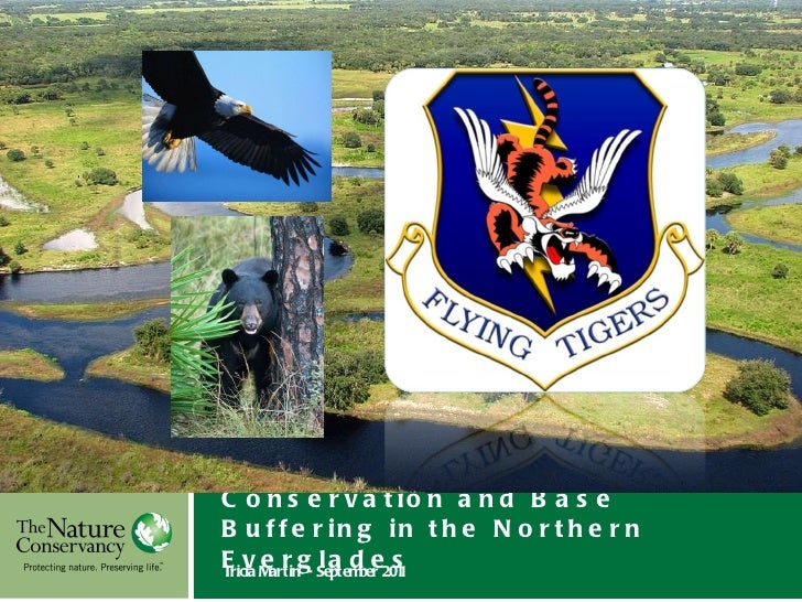 Conservation and Base Buffering in the Northern Everglades  Tricia Martin  -  September 2011 Insert Your Image Here © Inse...