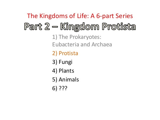 1) The Prokaryotes: Eubacteria and Archaea 2) Protista 3) Fungi 4) Plants 5) Animals 6) ??? The Kingdoms of Life: A 6-part...