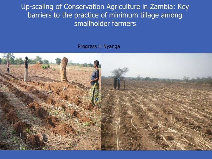 Up-scaling of Conservation Agriculture in Zambia: Key  barriers to the practice of minimum tillage among                  ...