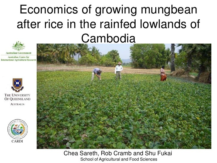 Economics of growing mungbean  after rice in the rainfed lowlands of                CambodiaCARDI           Chea Sareth, R...