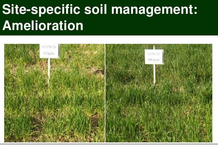 Spatial variation of soil constraints and its implications for Soil 60 years