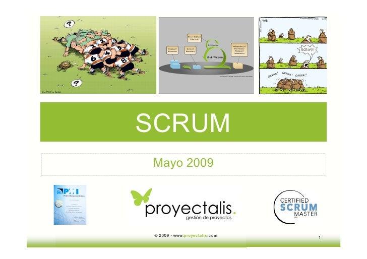 SCRUM Mayo 2009     © 2009 - www.proyectalis.com   1