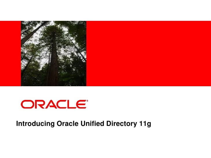 Talk IT_ Oracle_임기성_110907