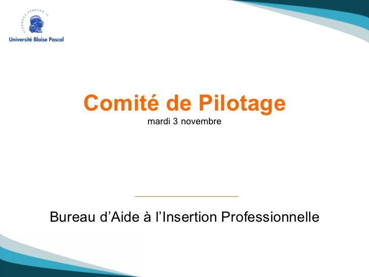 Comité de Pilotage mardi 3 novembre Bureau d'Aide à l'Insertion Professionnelle