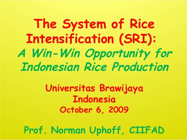 0953 The System of Rice Intensification (SRI):  A Win-Win Opportunity for Indonesian Rice Production
