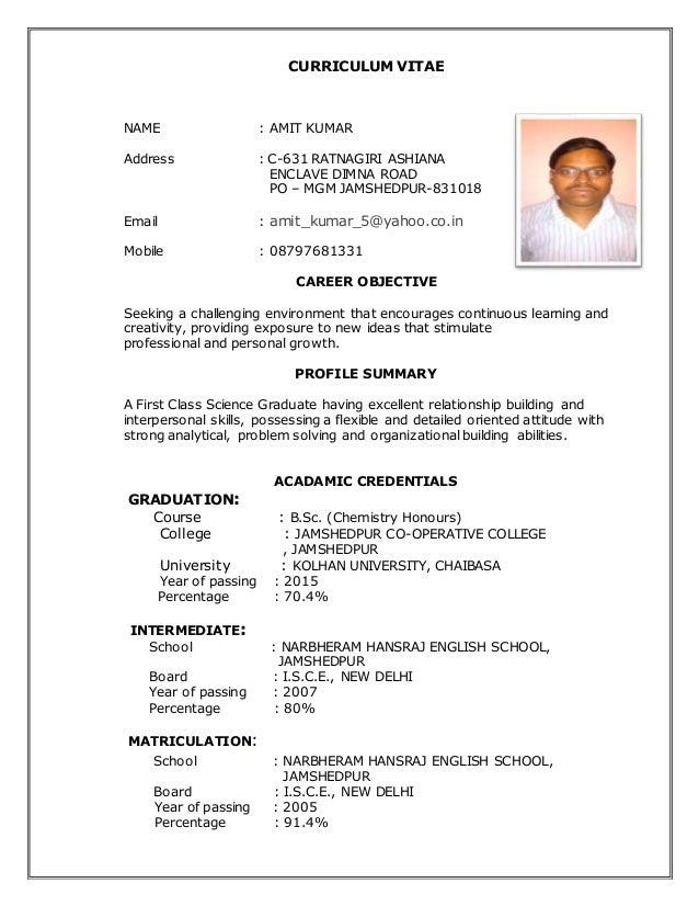 most recent updated resume amit