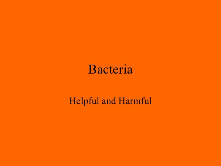 Bacteria Helpful and Harmful