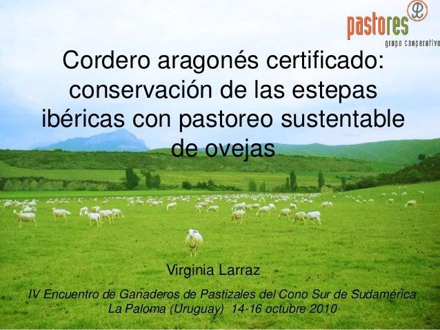Cordero aragonés certificado: conservación de las estepas ibéricas con pastoreo sustentable de ovejas IV Encuentro de Gana...