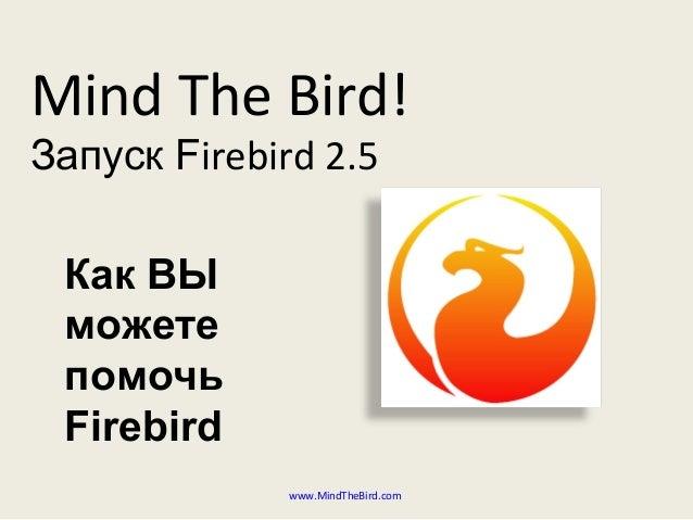 Mind The Bird! Запуск Firebird 2.5 www.MindTheBird.com Как ВЫ можете помочь Firebird