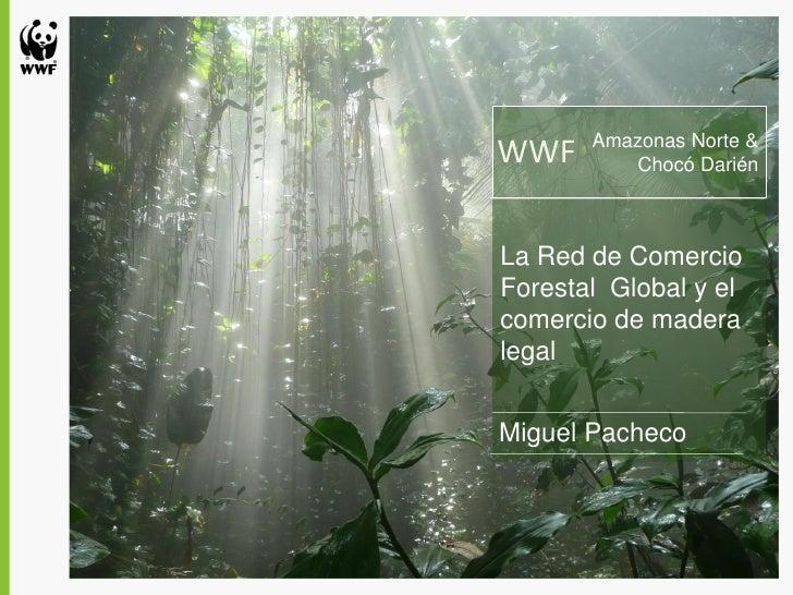 Amazonas Norte &WWF       Chocó DariénLa Red de ComercioForestal Global y elcomercio de maderalegalMiguel Pacheco