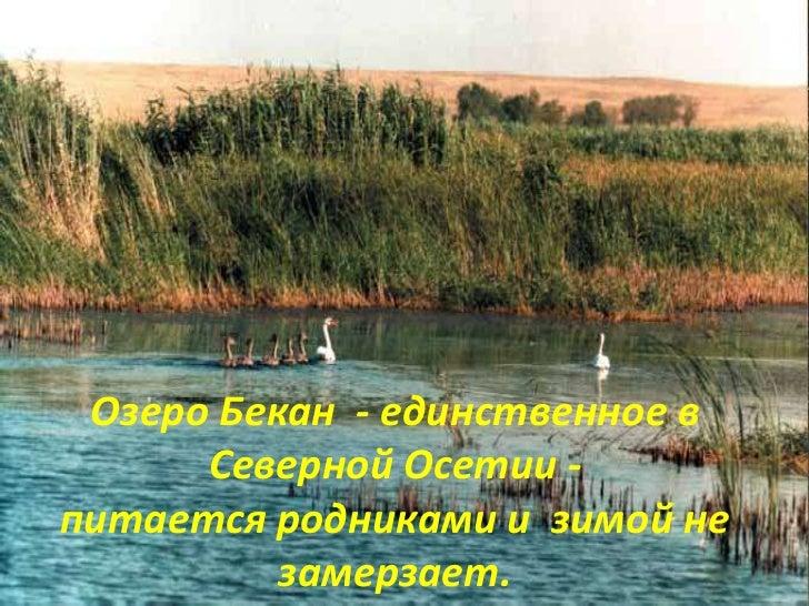озеро бекан северная осетия рыбалка