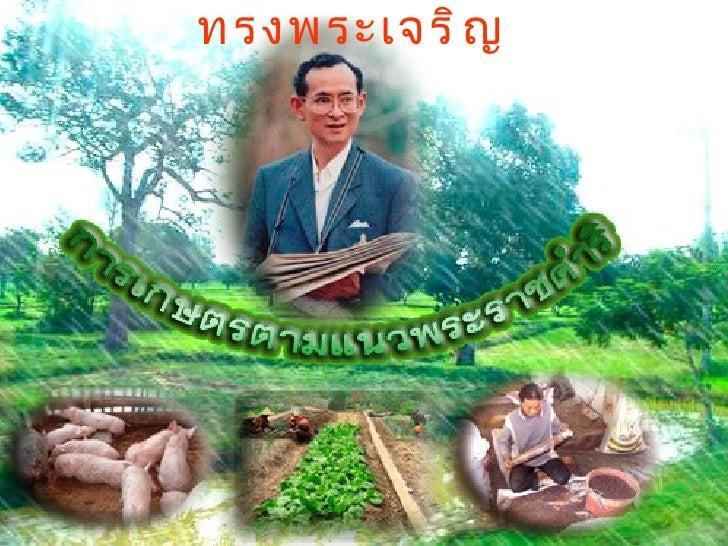 หน่วยที่1ความรู้เบื้องต้นเกี่ยวกับการเกษตร