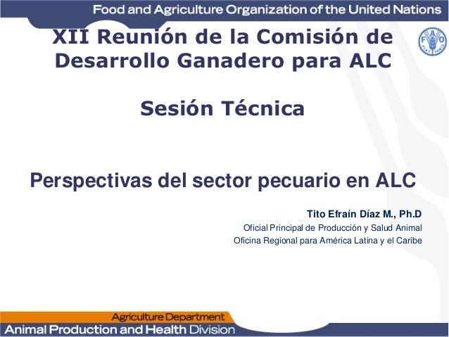 XII Reunión de la Comisión de Desarrollo Ganadero para ALC Sesión Técnica  Perspectivas del sector pecuario en ALC Tito Ef...