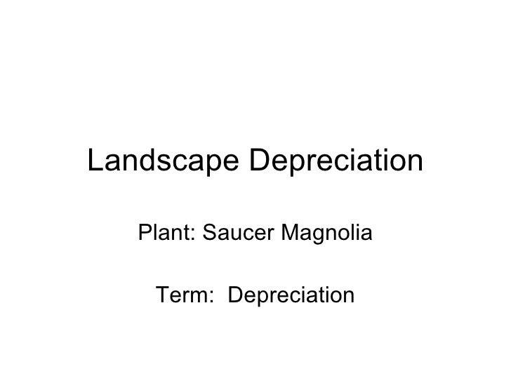 Landscape Depreciation Plant: Saucer Magnolia Term:  Depreciation