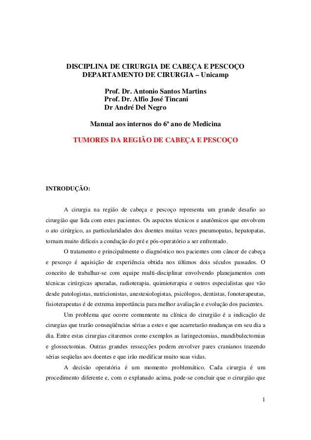 1 DISCIPLINA DE CIRURGIA DE CABEÇA E PESCOÇO DEPARTAMENTO DE CIRURGIA – Unicamp Prof. Dr. Antonio Santos Martins Prof. Dr....