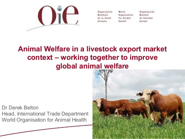 Animal Welfare in a livestock export market context – working together to improve global animal welfare  Dr Derek Belton H...