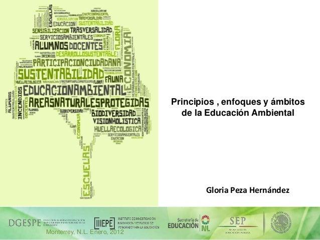 Principios , enfoques y ámbitos de la Educación Ambiental  Gloria Peza Hernández  05/12/2013  Monterrey, N.L. Enero, 2012 ...