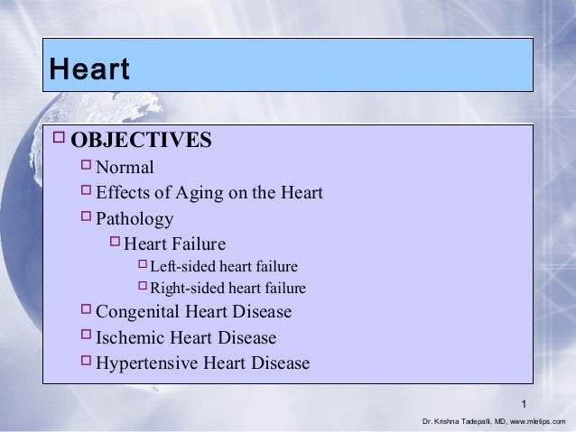 Heart  OBJECTIVES  Normal  Effects of Aging on the Heart  Pathology Heart Failure Left-sided heart failure Right-si...