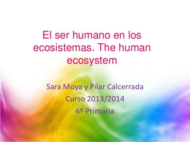 El ser humano en los ecosistemas. The human ecosystem Sara Moya y Pilar Calcerrada Curso 2013/2014 6º Primaria