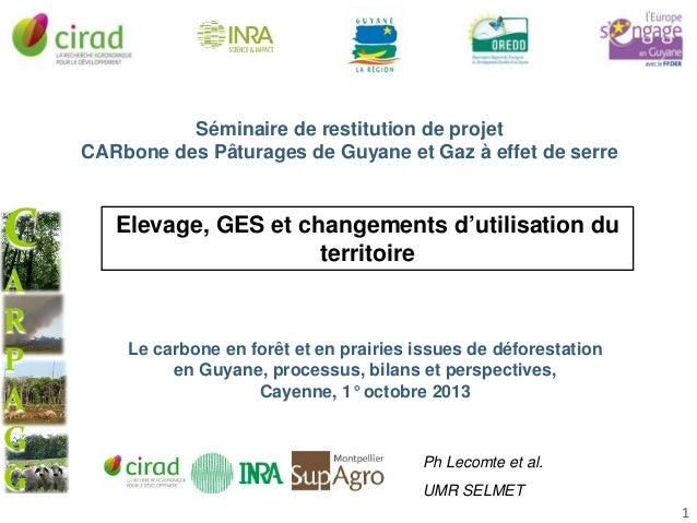 Séminaire de restitution de projet CARbone des Pâturages de Guyane et Gaz à effet de serre  C A R P A G G  Elevage, GES et...