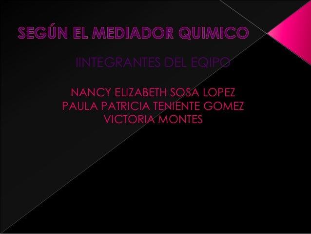 IINTEGRANTES DEL EQIPO NANCY ELIZABETH SOSA LOPEZ PAULA PATRICIA TENIENTE GOMEZ VICTORIA MONTES
