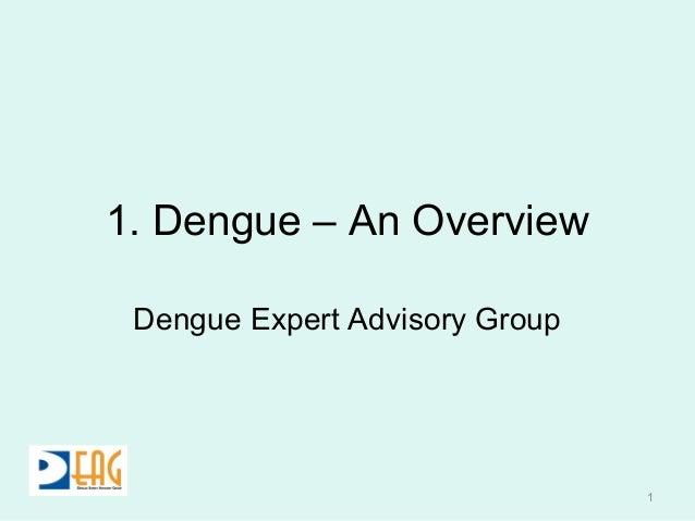 1. Dengue – An Overview Dengue Expert Advisory Group 1