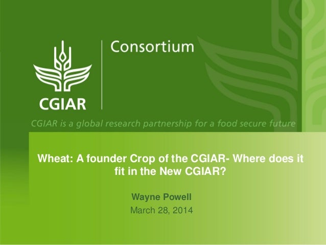 Wheat: A founder Crop of the CGIAR- Where does it fit in the New CGIAR? Wayne Powell March 28, 2014