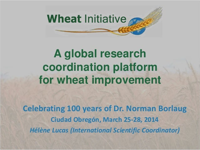 Celebrating 100 years of Dr. Norman Borlaug Ciudad Obregón, March 25-28, 2014 Hélène Lucas (International Scientific Coord...