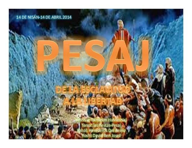 14 DE NISÁN-14 DE ABRIL 2014 Yeshivá: Talmidim HaMashiaj Tema: las fiestas-Pesaj Kahál: Herederos Del Reino Rosh: David Be...