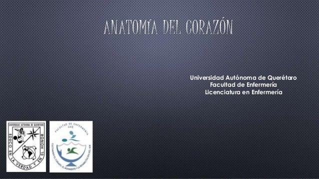 Universidad Autónoma de Querétaro  Facultad de Enfermería  Licenciatura en Enfermería