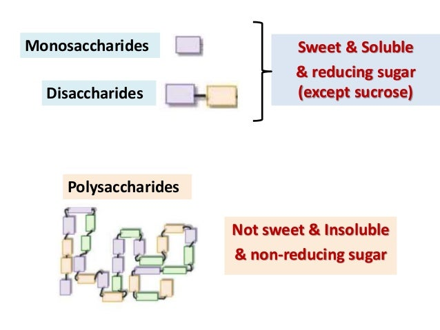 Chem essay- what purpose does glucose and sucrose serve in plants?
